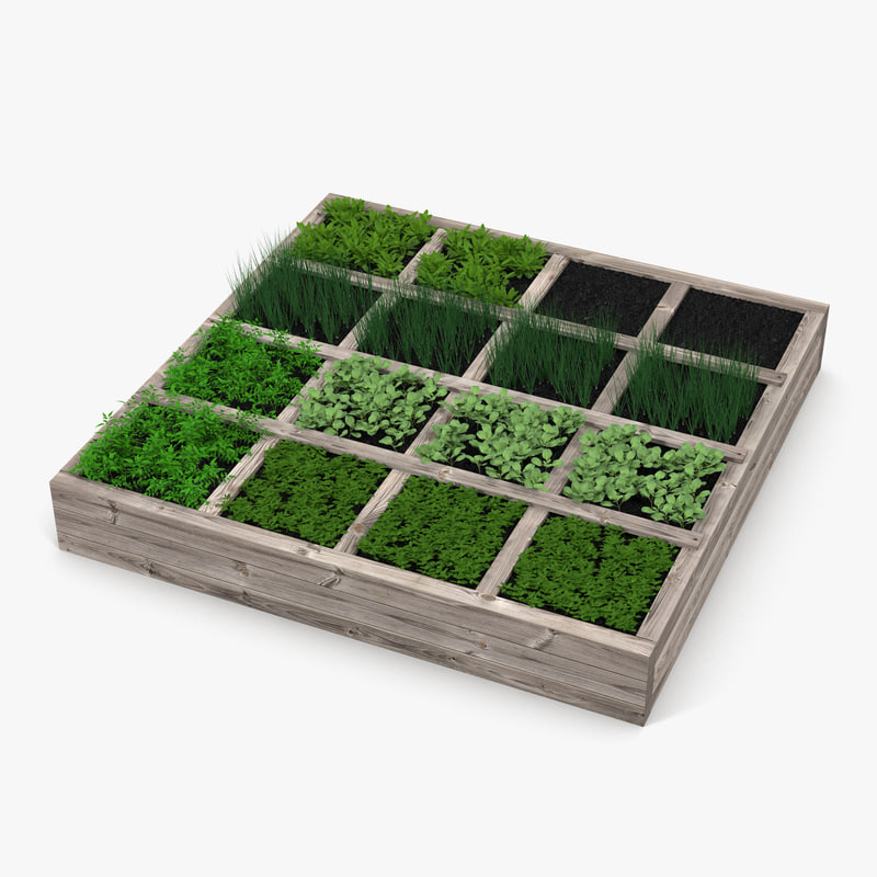 3d model vegetable garden for Garden design in 3ds max