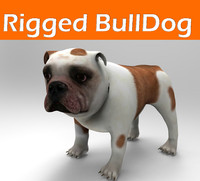 bulldog rigged 3d model