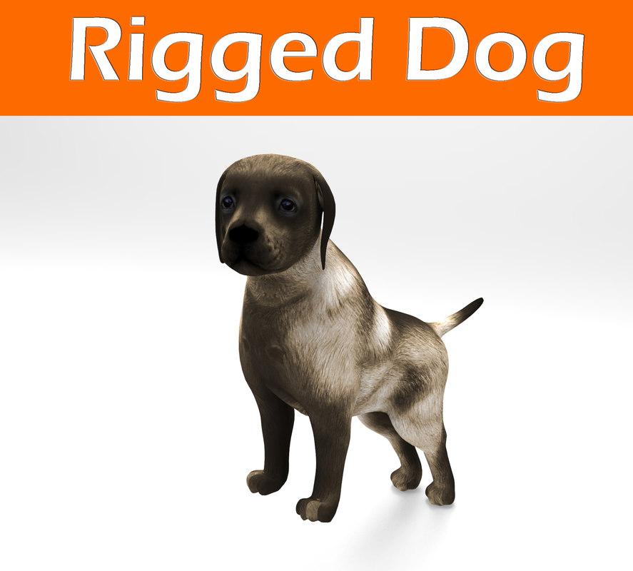 Dog_Rigged.jpg