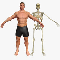 male skeleton max