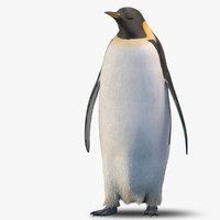 adult emperor penguin rigged max