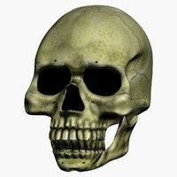 3ds animation skull talk