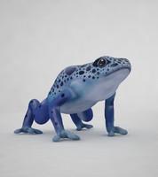 3d model frog blue