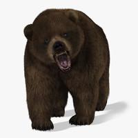 bear fur animation 3d