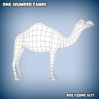 3d base mesh camel