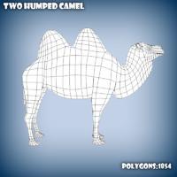 base mesh camel 3d c4d