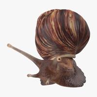 3d model snail 02