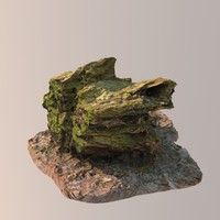 scan tree stump 3d model