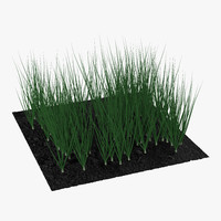 3d 3ds young onion plants garden