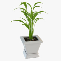 home plant 3d max