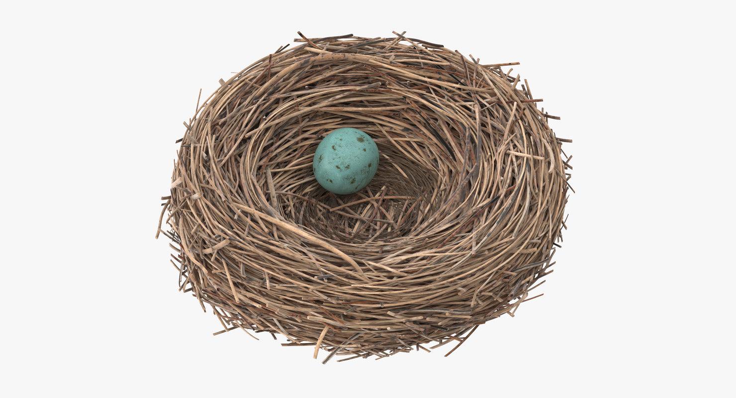 Bird_Nest_03_Thumbnail_0000.jpg
