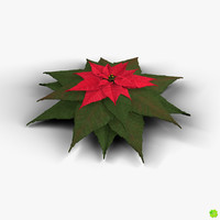 Poinsettia low poly