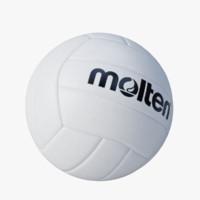 volleyball molten 3d model