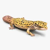 leopard gecko pose 3 3ds