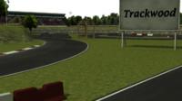 3d trackwood drift track