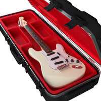electric guitar case max