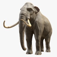 mammoth tusks 3d model