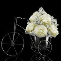 ranunculus arrangement 3d model