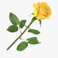 rose modeled 3d max