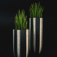 vases cylindrical 3d max