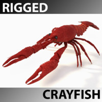 rigged crayfish 3d model