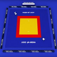 3d model judo arena