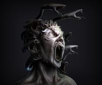 Medusa Gorgon Bust