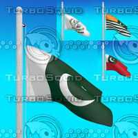 flags pakistan - 3d model