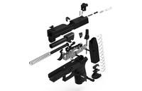 3d gun p250 pistol sig