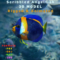 3d model scribbled angelfish realistic animation