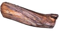 branch rotten wood 67