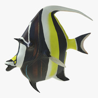 moorish idol fish pose 3d c4d