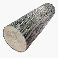 Wood Log_rar