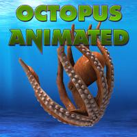 octopus max