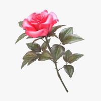 rose pink v 3 3d model