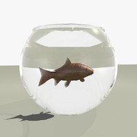 Animated Goldfish in a Fish Bowl