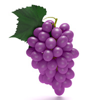 purple grapes 3d model