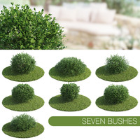 3d model seven bush
