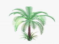 low Poly Palm Tree. Animated