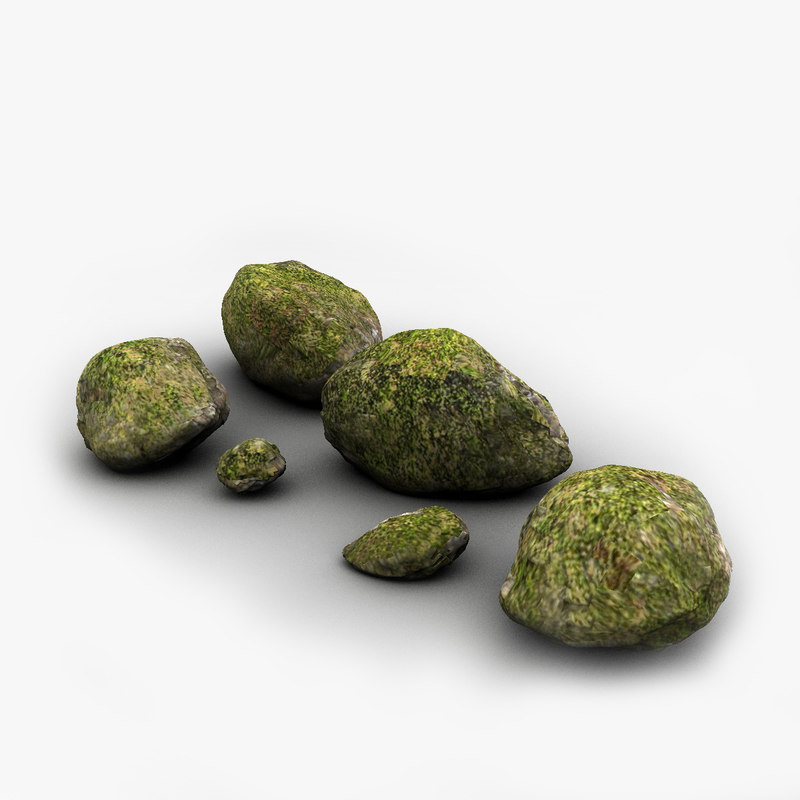 1200 rocks0mossy copia.jpg