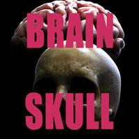 3d model brain skull