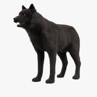 3d model wolf black