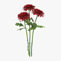 3d red bouquet chrysanthemum -