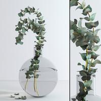 jar eucalyptus flowers 3d max