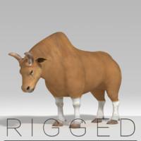 bull  rigged