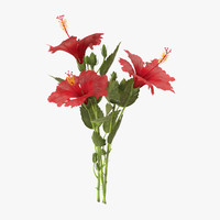 3d hibiscus bouquet -