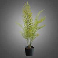 majesty palm - pbr 3d model