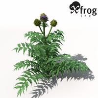 XfrogPlants Artichoke