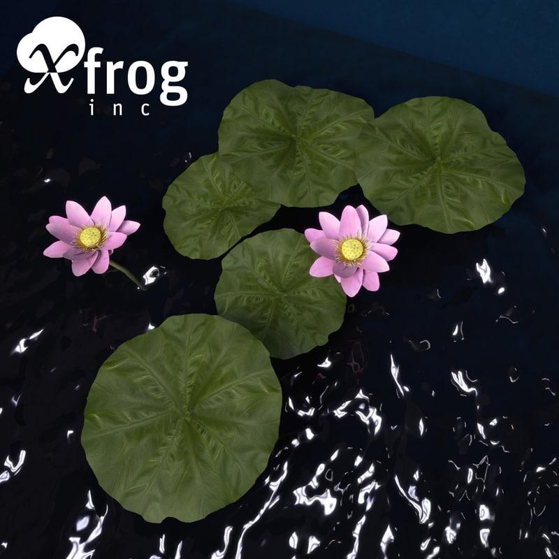 FL49-lotus-6.jpg