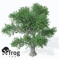 service tree 3d model